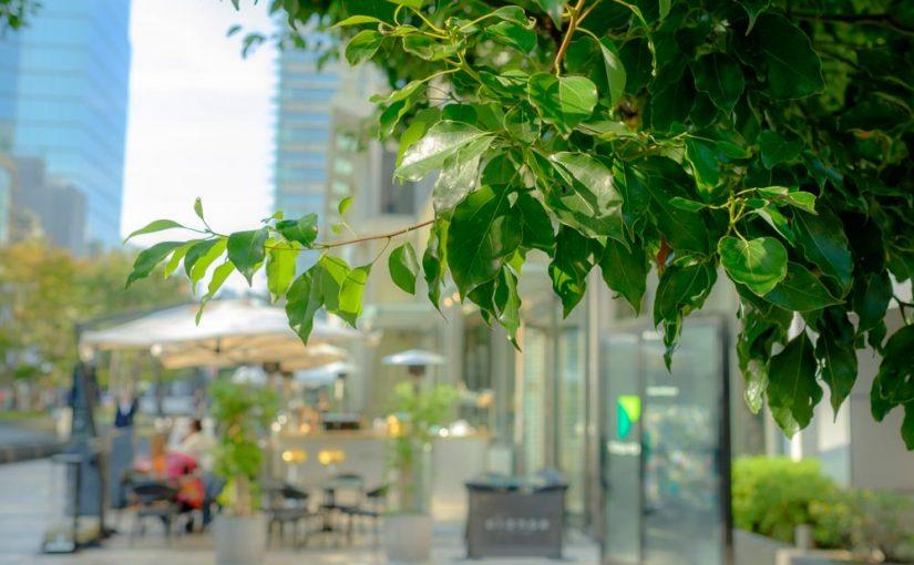 都会のオシャレなオープンカフェ